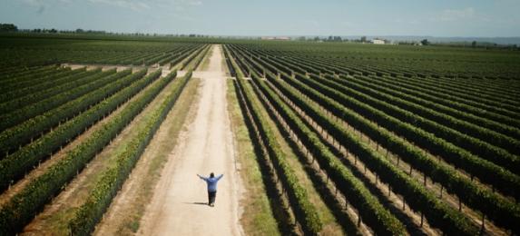 Escena de «El camino del vino»